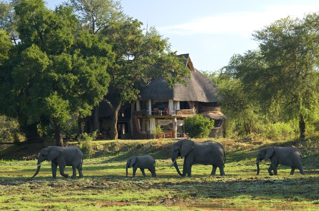 Luangwa Safari House exterior with elephants walking past South Luangwa Zambia