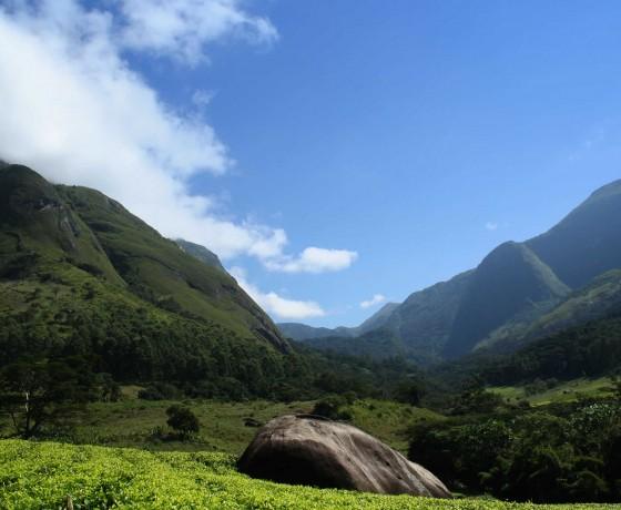 Tumbling mountains and tea estates