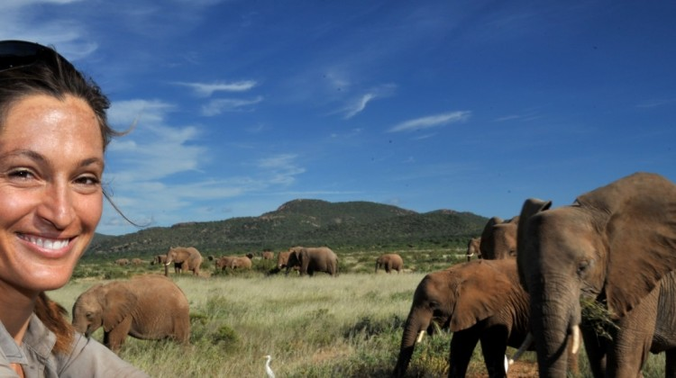 Saba Douglas-Hamilton, elephant conservationist with herd of Samburu elephants, in Samburu, Kenya