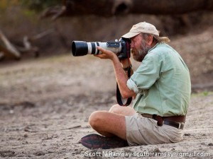 Stretch Ferreira – safari guide