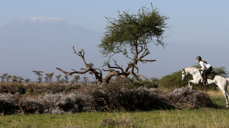 Horse riding safari - rider jumping on a grey horse over a log in the African savannah with Mount Kilimanjaro beyond