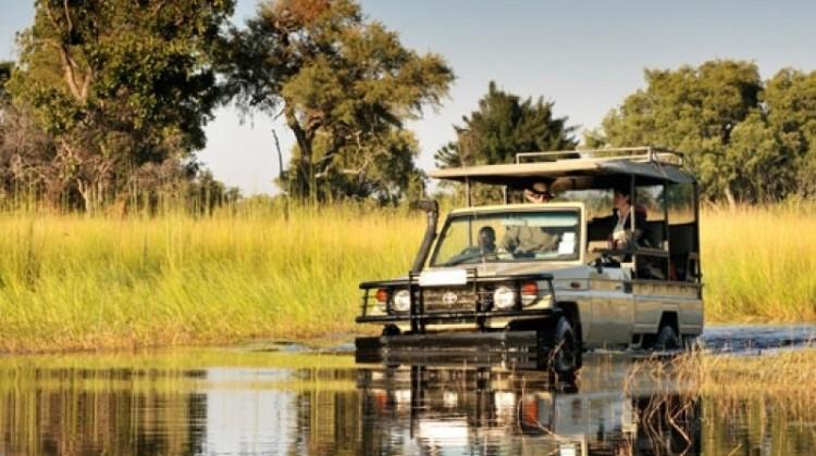 Game driving 4x4 through the Okavango Delta, Botswana