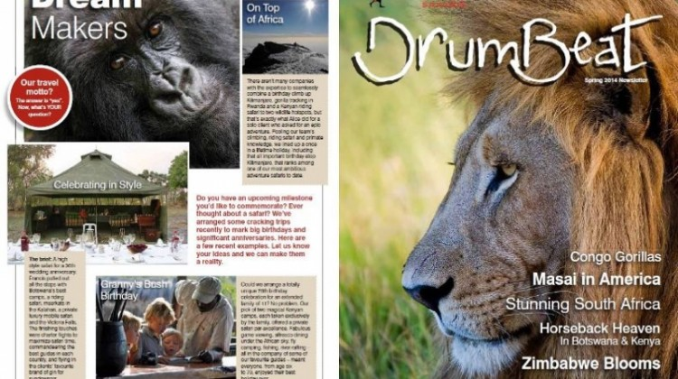 Drumbeat Spring Newsletter front cover male lion
