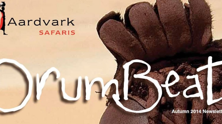 Drumbeat Autumn 2014 front cover Namibian woman