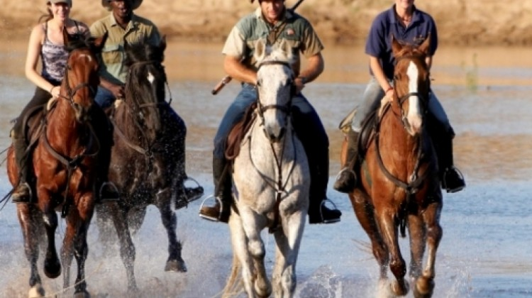 limpopo horse safaris riders galloping through Okavango Delta wetlands Botswana