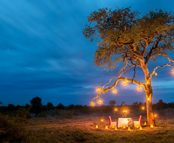 Safari wedding list service
