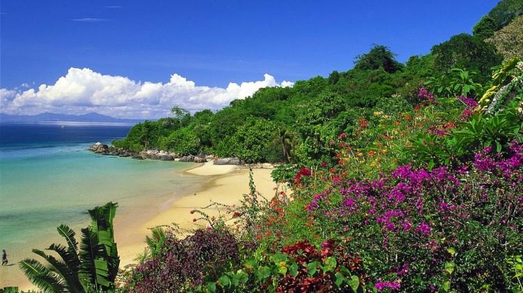 Magical Madagascar