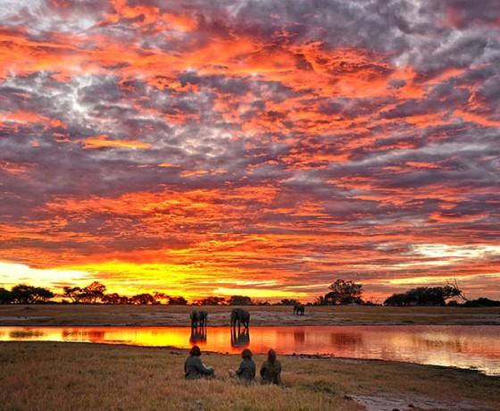 Walking safaris in Zimbabwe