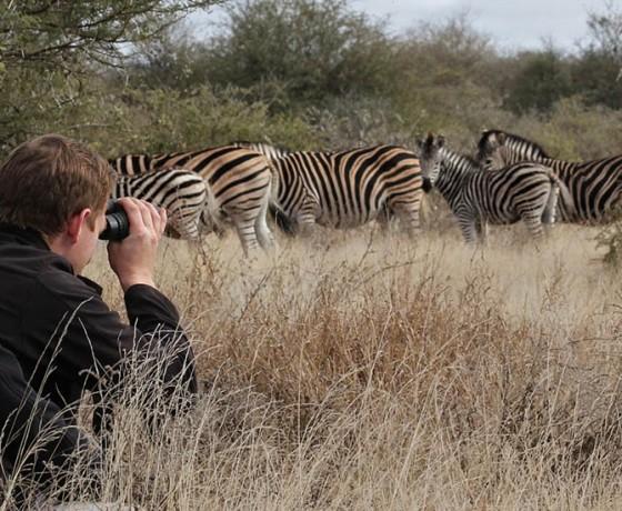 Walking safaris in South Africa