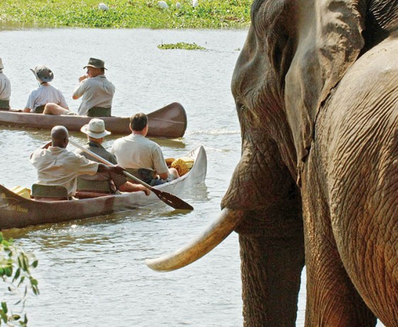 Lodge based canoeing in Zambia