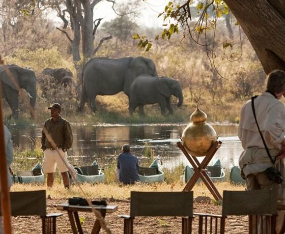 Canoe safari accommodation