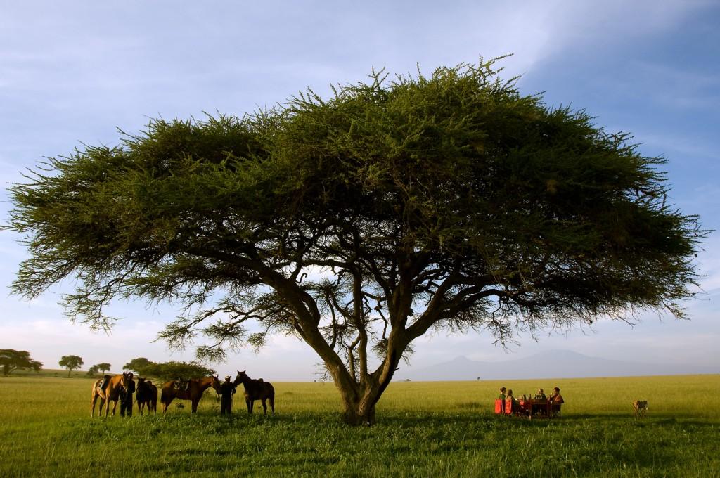 Ol Donyo Riding Tea Break Kenya Great Plains Conservation