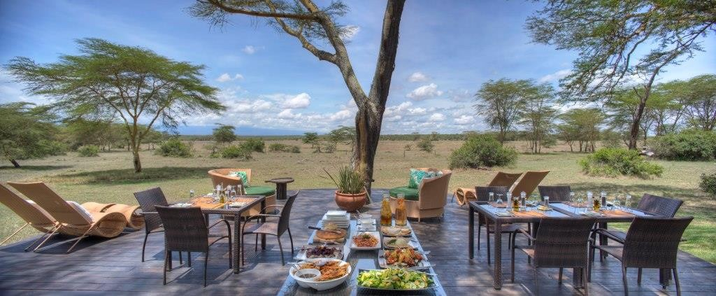 Lunch in the open, with 360 wildlife views, Solio Lodge, Laikipia, Kenya