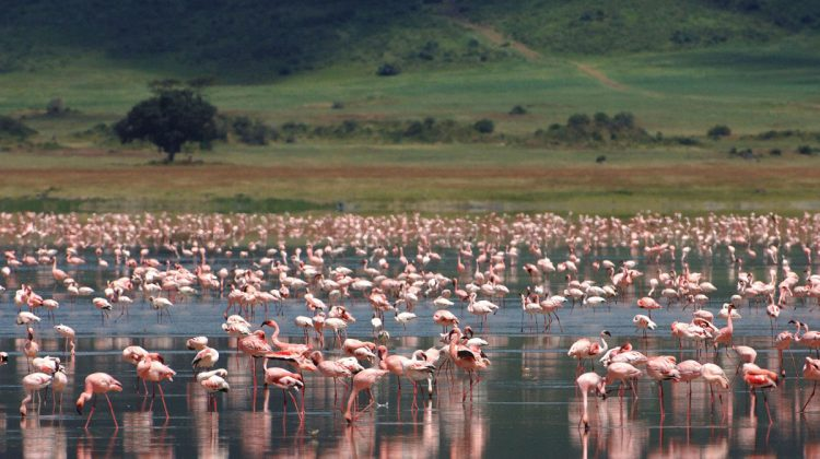 African landmarks UNESCO Ngorongoro crater, Tanzania