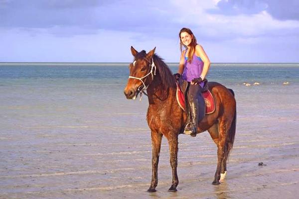 'Life's a beach', safari horse Brutus, Mozambique Horse Safaris, Mozambique