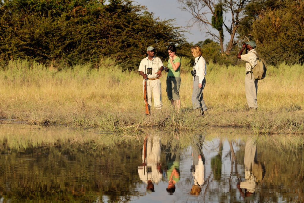Walking safaris with Footsteps Across the Delta