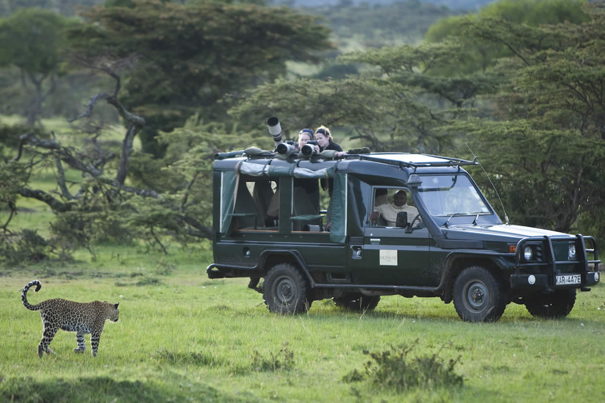 Photography holidays - Kicheche safari drive