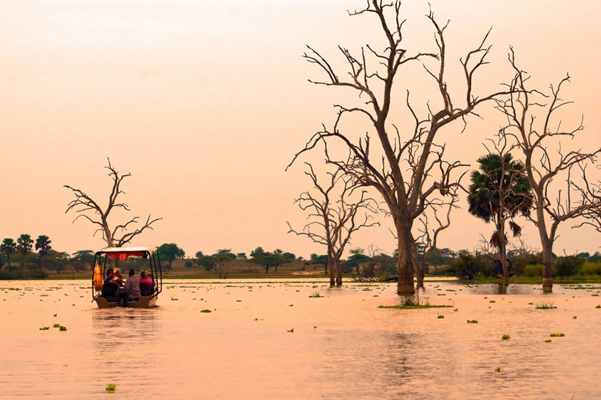 Lake Manze, Selous