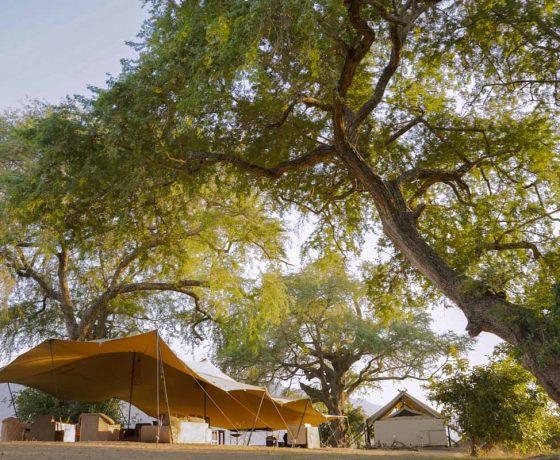 Little Vundu Zambezi River Tented Camp Mana Pools Zambia