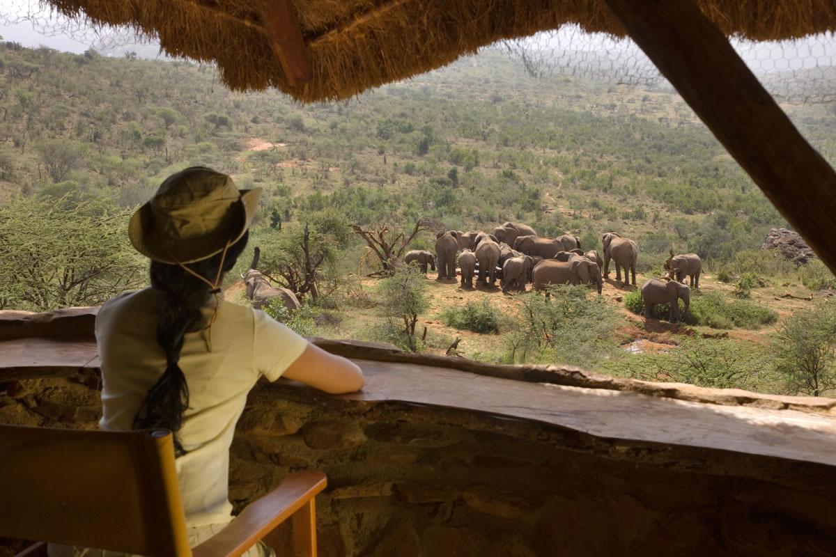 Viewing elephants at Ol Malo, Kenya