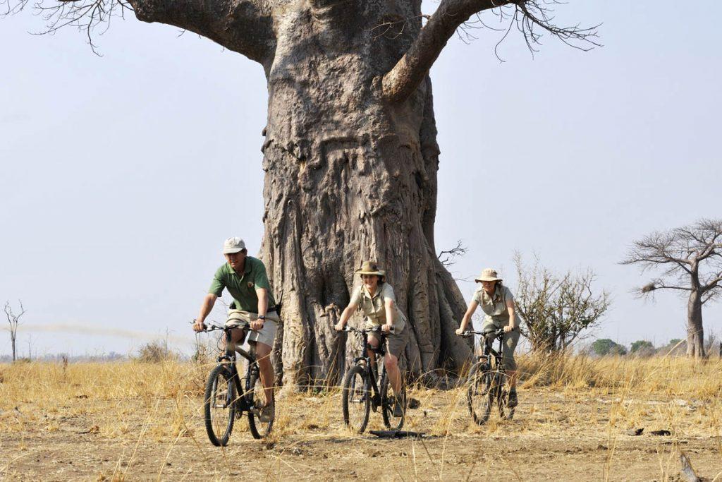 Tafika cycling