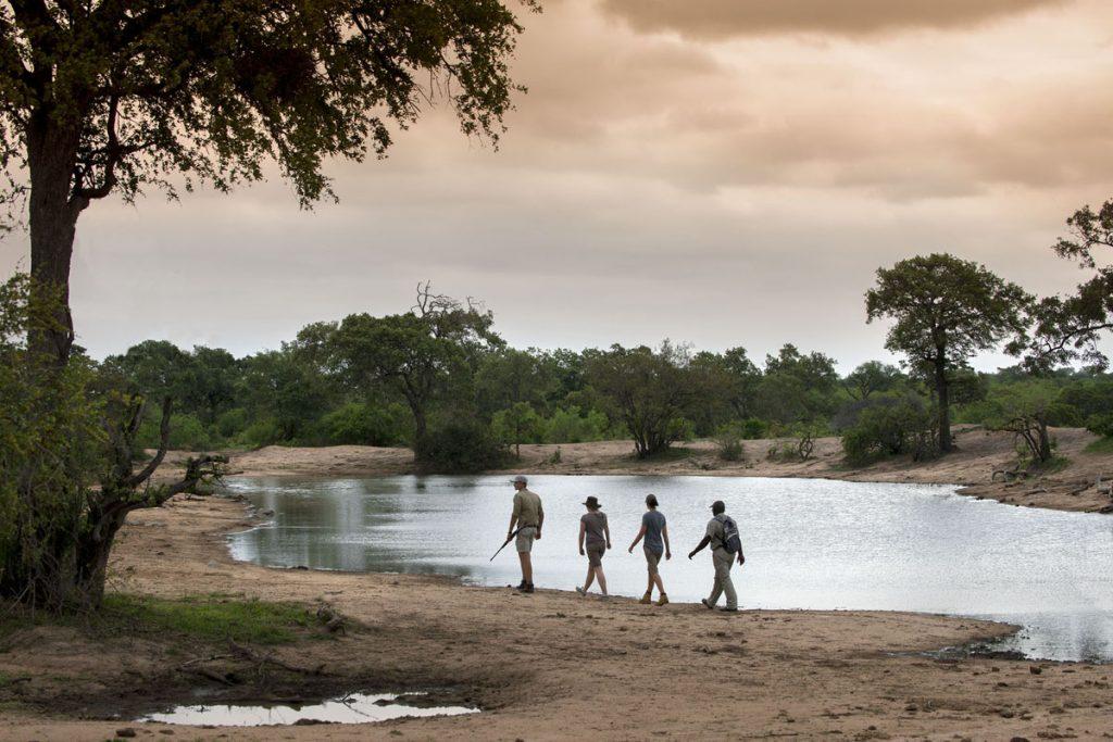 Tanda Tula Field Camp sunset walk by waterhole