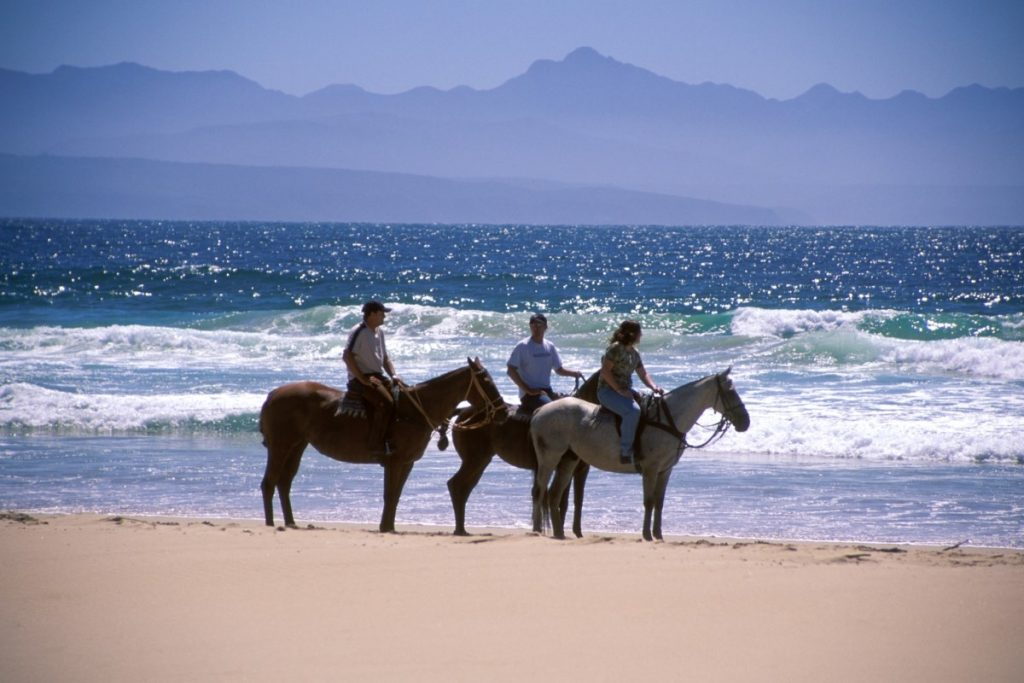 kurland-horse-riding-on-beach-plettenberg-bay-south-africa
