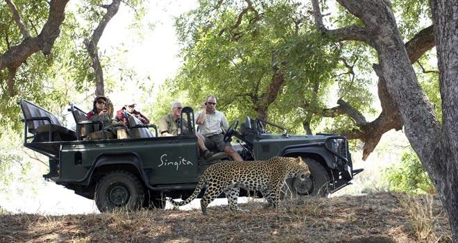 Watching a leopard at Ebony Lodge Singita, Sabi Sands