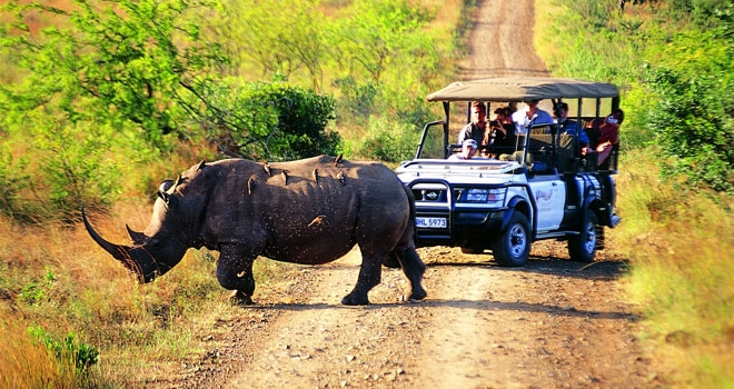 slider_hluhluwe_game_drive