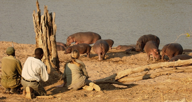 A Zambia And Malawi Family Safari For Teenagers