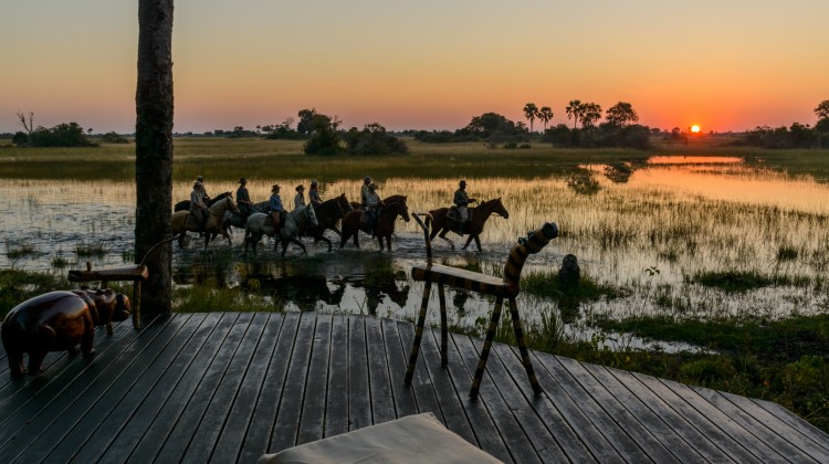 African Horseback Safaris - riders or a riding safari wading on horseback through the Okavango Delta, Botswana