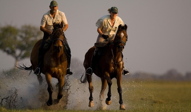 Africa's Top Riding Safari Guides Q&A