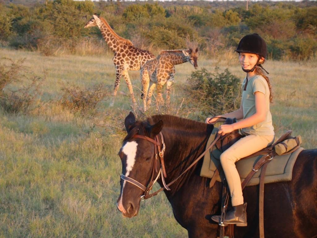 Family-safaris-5-ANTS-giraffe-1024x768