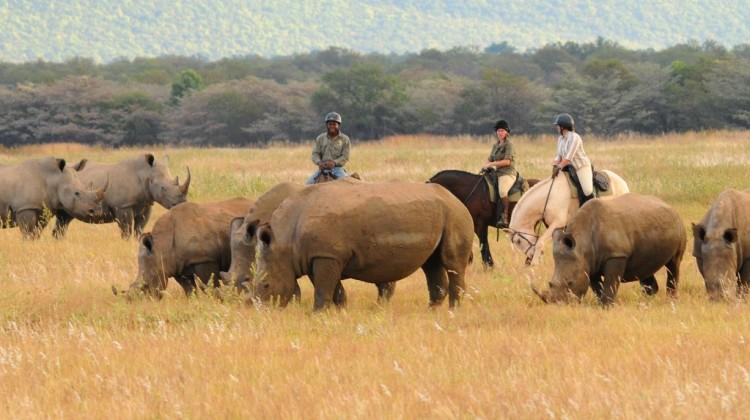 9 Riding Safari Lodges In Africa