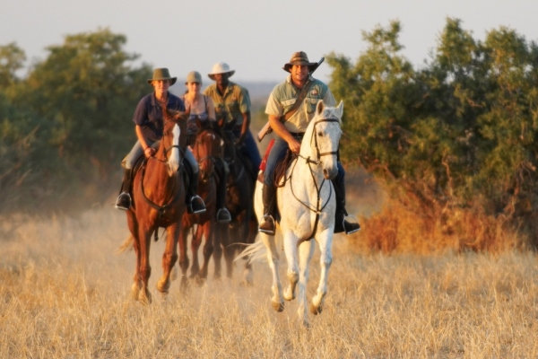 Limpopo Valley Horse Safaris, Mashatu Game Reserve, Botswana