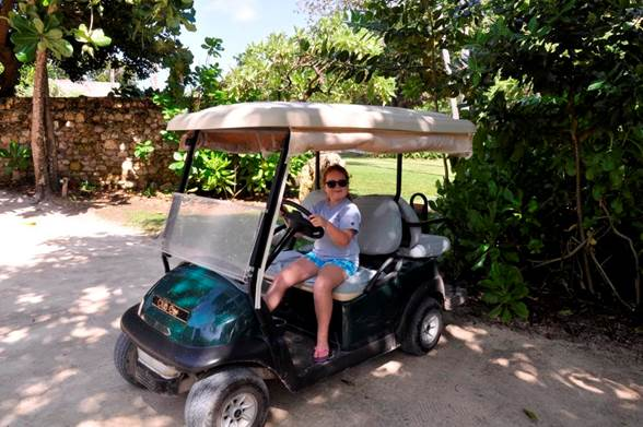 North-island-golf-buggy