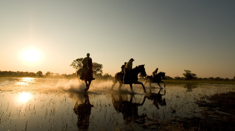 Which Mobile Riding Safari Is For You?