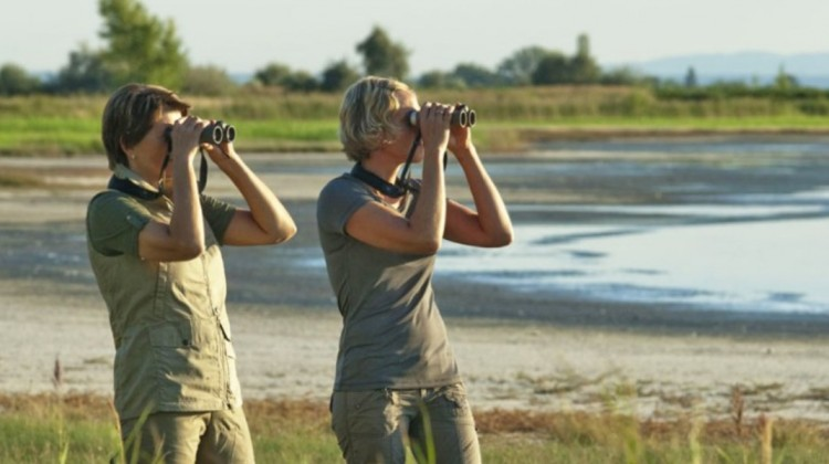 Two safari guests using swarovski safari binoculars