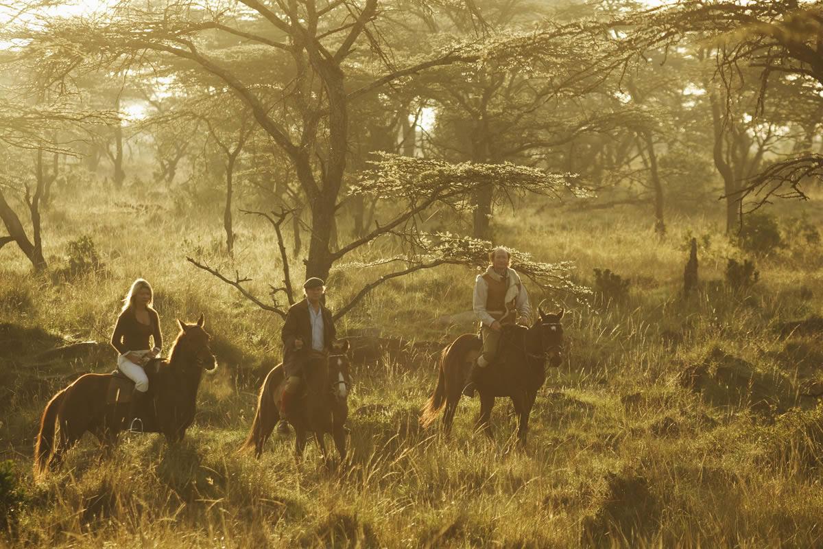 Morning ride mist in the Masai Mara, Kenya Safaris Unlimited