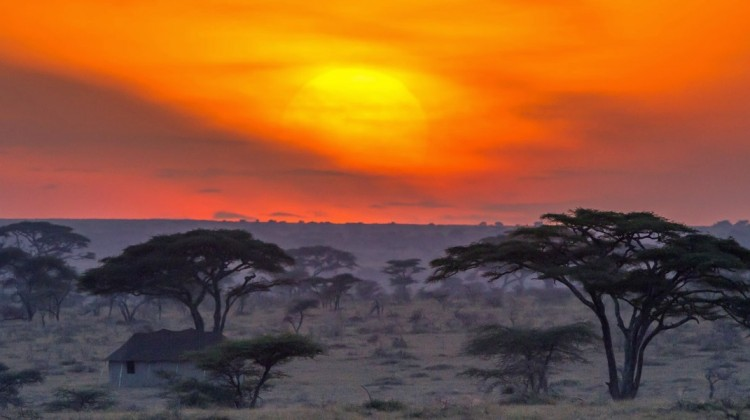 Serengeti Namiri Plains scenery at sunset Paul Joynson-Hicks