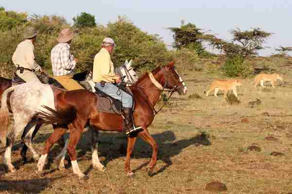 Tristan Voorspuy Offbeat Safaris Riding With Lions