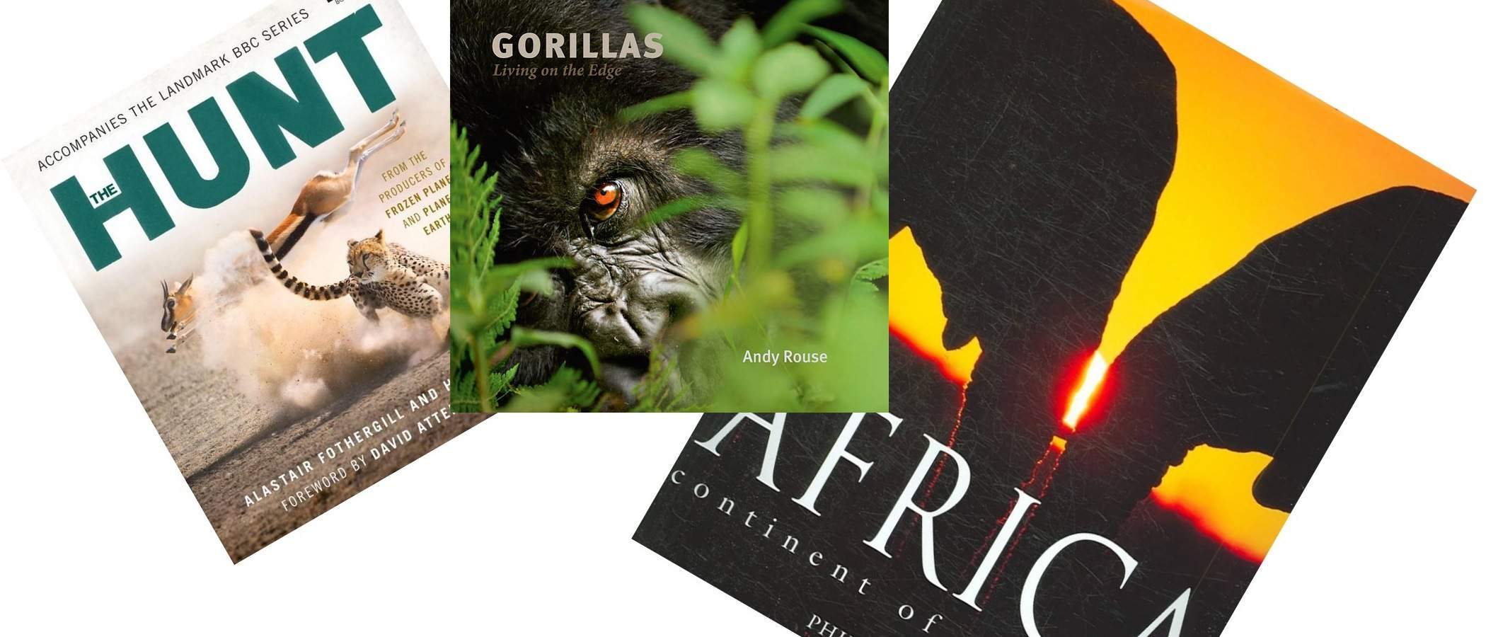 Best Wildlife Coffee Table Books Aardvark Safaris