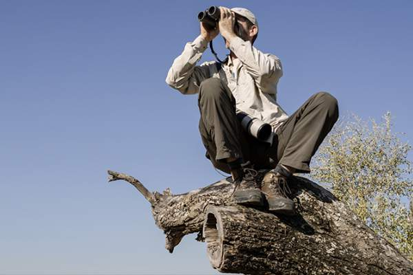 Zeiss-binoculars