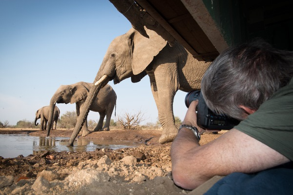 Elephants and photographer at the C4 Images hide at Mashatu