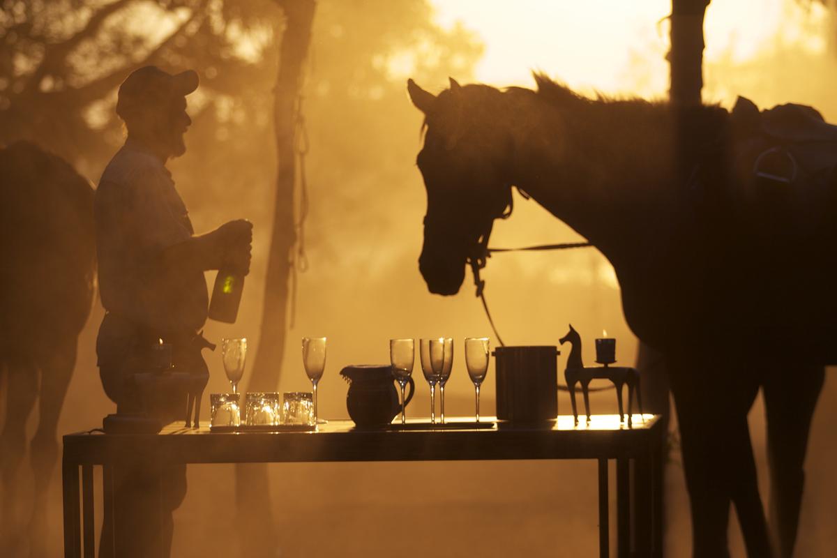 Okavango-Horse-Safaris-Sundowner