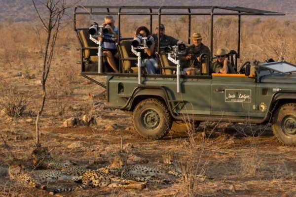 Specialist photographic vehicle at Jacis Lodges with cheetahs