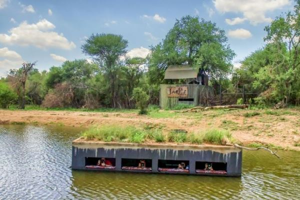 Terrapin hide at Jacis Lodges waterhole