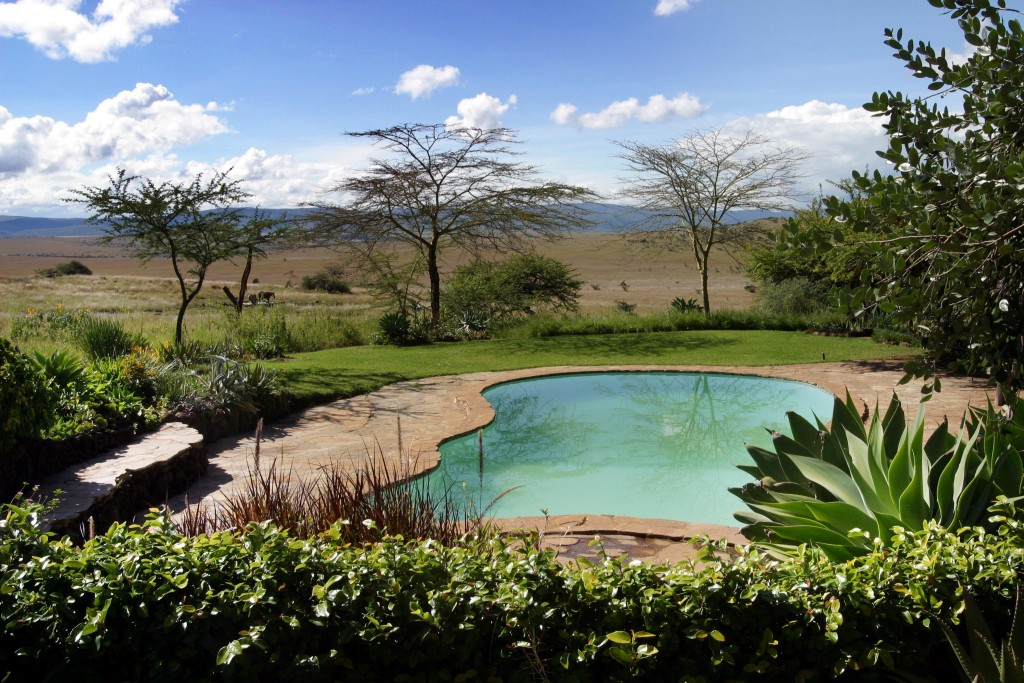 Lewa House Pool Lewa Kenya family safari