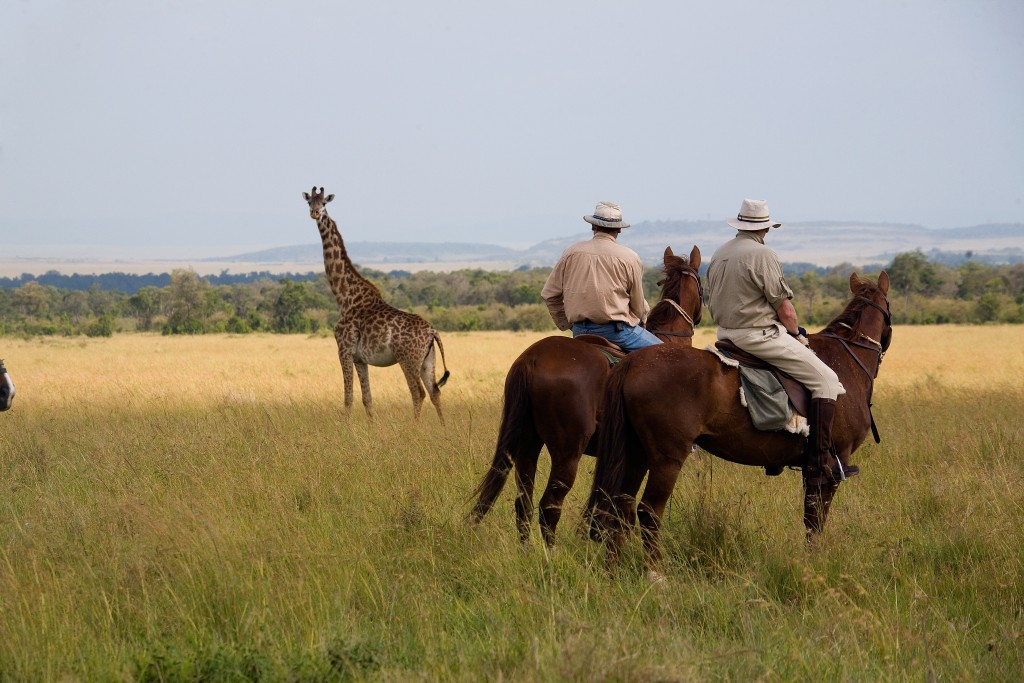 In the saddle wildlife viewing, Offbeat Safaris