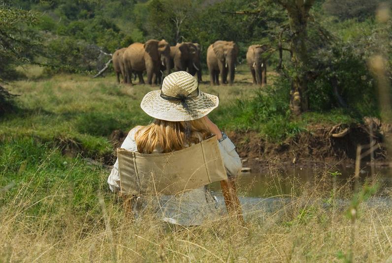 Sosian_guest_sitting_elephants_Laikipia_Kenya